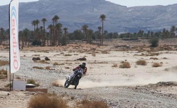 Barreda Maroc