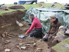 Archaeologists dig up skeletons of Norse settlers  in 2010 at the Norse farm Ø64, Igaliku Fjord,  Østerbygden, Greenland. Photo: Jette Arneborg