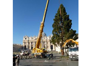 The Christmastree is being erected on St. Peter's square in Rome.