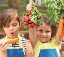 """""""Gemüsebeete für Kids."""""""
