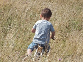 Wild cycling: a small boy enjoys the unmown areas of Saltdean Oval