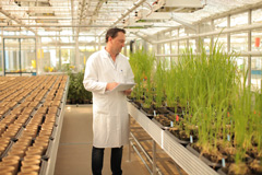 Biological technician Frederic Bach conducts greenhouse-based diagnostics tests at Bayer CropScience's Weed Resistance Competence Center in Frankfurt, Germany.