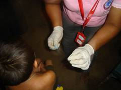 Preparation of the so-called thick blood smear for malaria diagnosis. Photo: Miguel Bolivar (CAICET, Puerto Ayacucho)