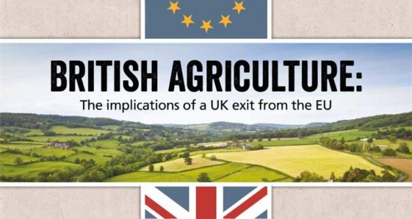 NFU commissioned LEI at Wageningen University to assess the impact of a UK exit from the EU