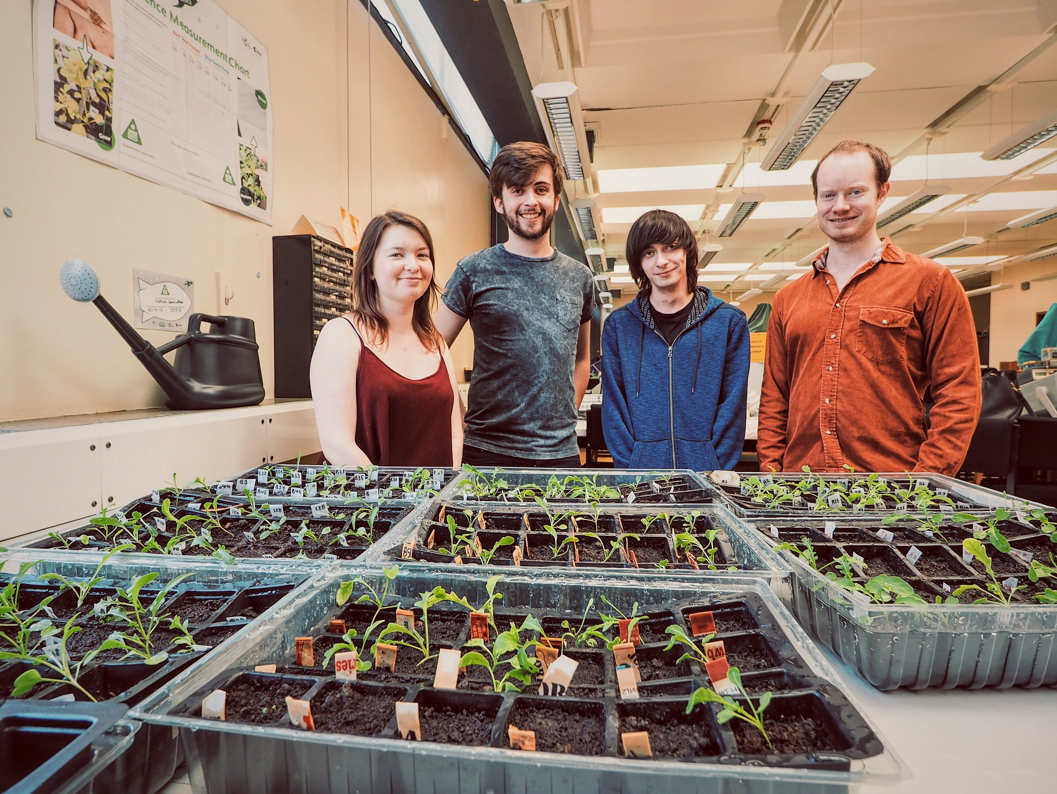 L-R – Physics students Holly Graham (2nd Year), Daniel Robson (2nd Year), Simon Howard-Clark (2nd Year) and Simon Joyce (Phd) Credit: University of Leicester