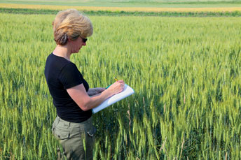 SGS adds Germany to its crop quality map service
