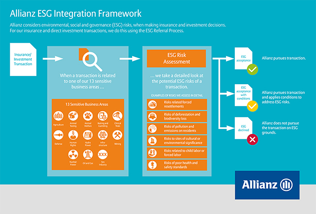 Allianz SE Integration Framework