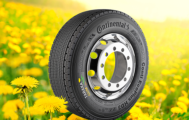 This Conti EcoPlus HD3 is the first truck tire made from dandelion rubber and delivers the same performance as a tire made from natural rubber obtained from conventional sources. Photo: Continental