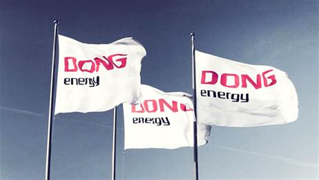 Shareholder representatives appointed to DONG Energy's Nomination Committee