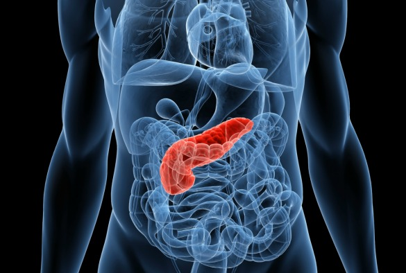 University of Liverpool identifies the mechanism causing resistance of pancreatic cancer cells to chemotherapy