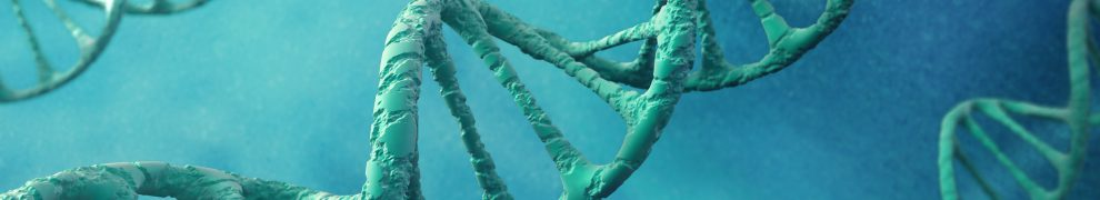 Tu delft researchers created an artificial dna blueprint for the vip malvernweather Gallery